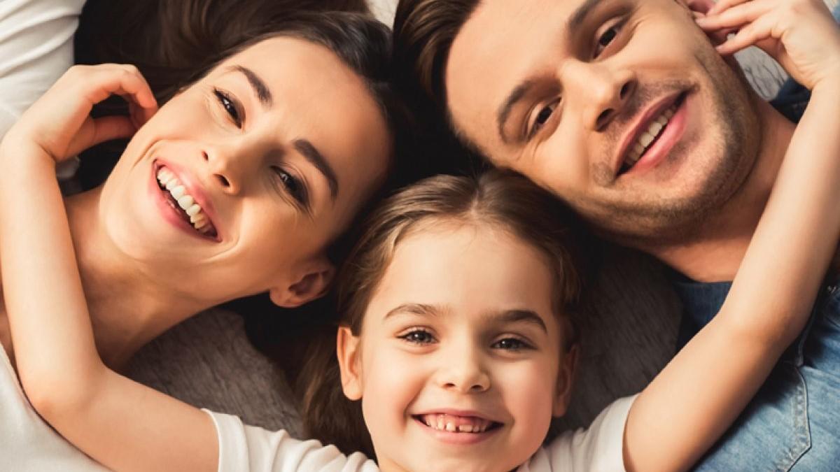 Artículo 233: Regulación jurídica de la familia – Análisis al código civil